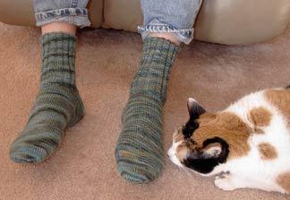 petes_forest_socks_on.jpg